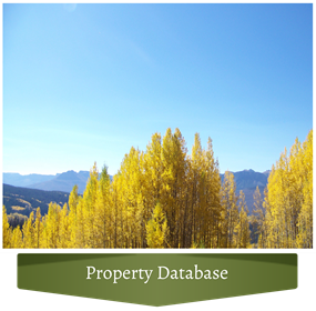 Property Database - Fall